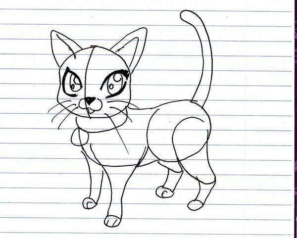 How To Draw A Cartoon Cat By Xxerindragonxx On Deviantart