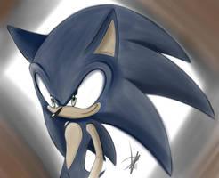 The hedgehog by KitsuneFusion