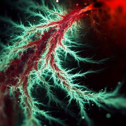 Microscopic #2 by JanRobbe