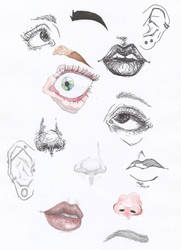 Face Experiments by way-kooks