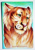 Tiger ACEO by soulwithin465