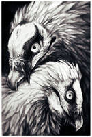 Bearded Vulture by soulwithin465
