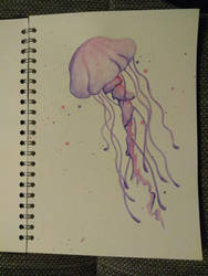 Jellyfish by Hyperschweinchen