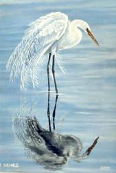 Egret by Artnes80