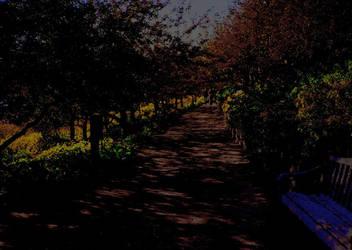 Autumn Path by josephdunphy
