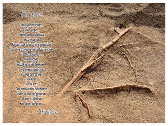 Kok ve Kum by Semsa