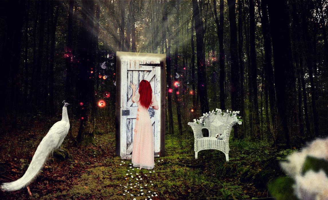 Magic Door by josgunner