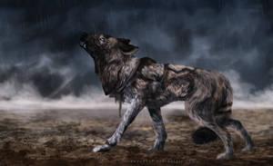 Sudden Storm by sercreepz