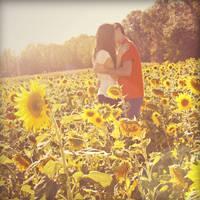 Sunflower Kiss by RebekaPhotography