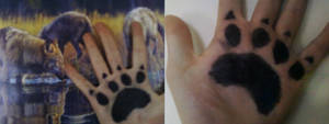 Paws by Pokemon-TF-Fan