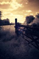 Gate by hrzn