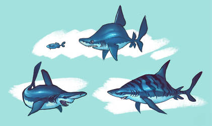 Shark sketches by Timooon