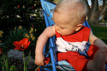 Flowerboy by fotografE