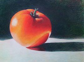 Tomato Study by k8lag