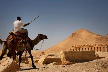 Desert conqueror by davidsant