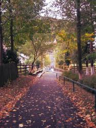 Park by TheMsmadcookie
