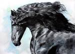 Friesian Horse at Black by ElenaShved