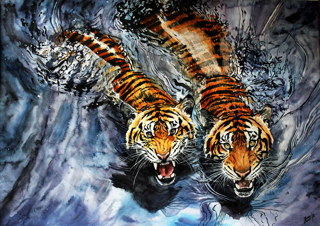 tigers by ElenaShved