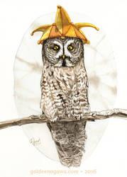 Strange Great Gray Owl by GoldeenHerself