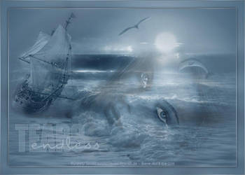Endless Tears by biene239