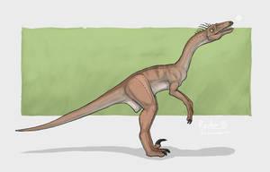 Raptor85. by Isdrake