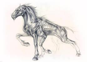 Sleipnir Sketch by Exileden