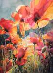 Poppys by kalinatoneva