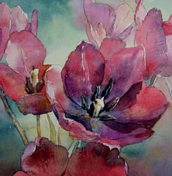 tulips by kalinatoneva