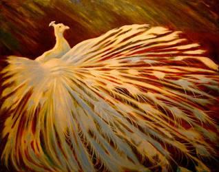 peacock by Bartsartny