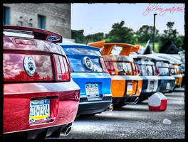 Multiple Mustangs HDR by evrengunturkun