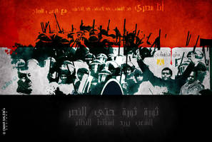 Egypt Revolution 2011 by omar05