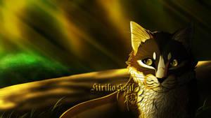 Sonnenlicht by Kiriko-Windgeist