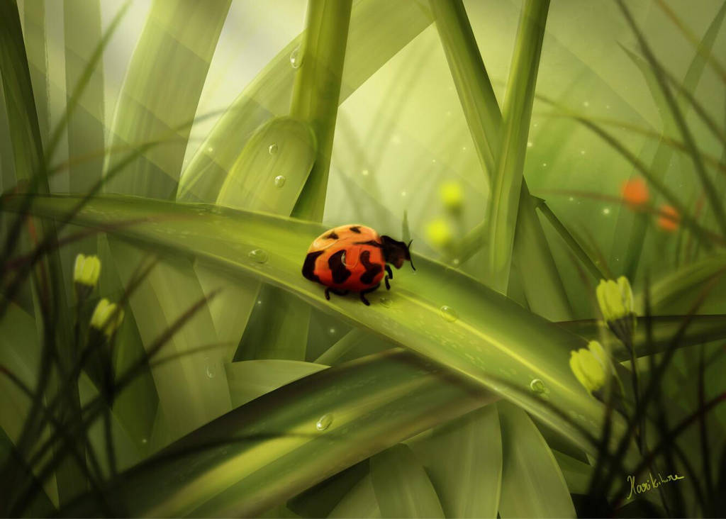 Ladybug by D4demonslayer