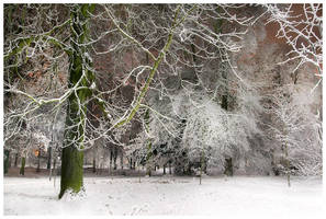 Winter Time by Sesjusz