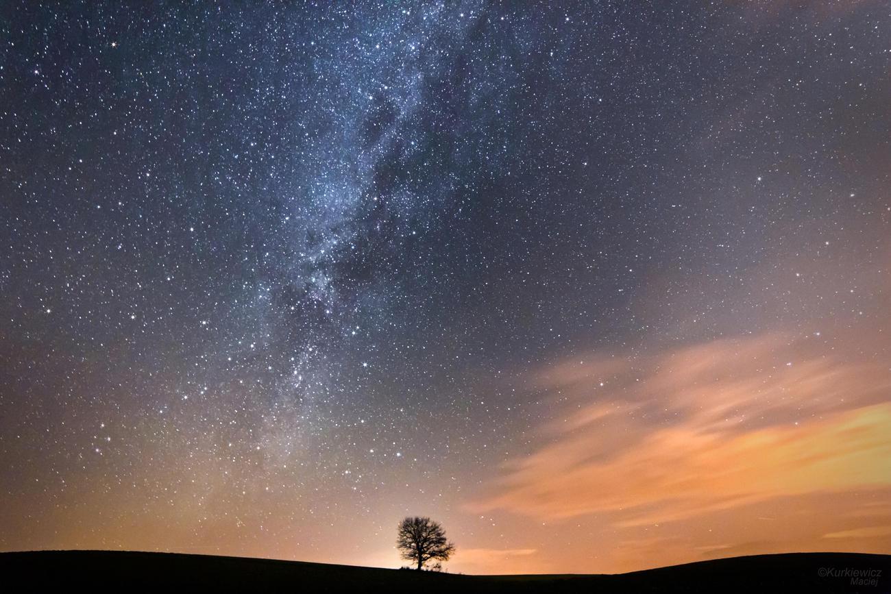 Sunset Stars by Sesjusz