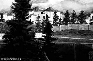 Country Hills Boulevard by C-u-r-i-o