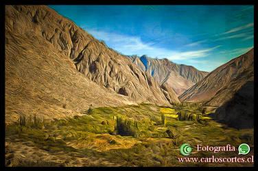 Valle de Elqui by CrearteCarlosCortes
