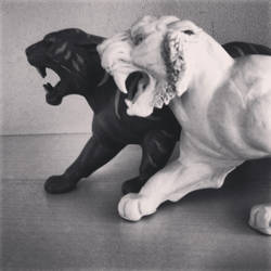 Battle-Cat by Braendyn