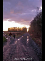 Crossroads by Encephalartos