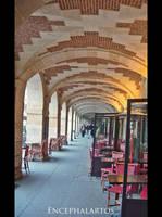 Places des Vosges III by Encephalartos