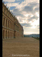 Built To Impress by Encephalartos