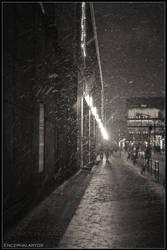 Snowy Perspectives by Encephalartos