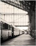 La Gare d'Austerlitz by Encephalartos