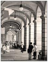 The Arcades by Encephalartos