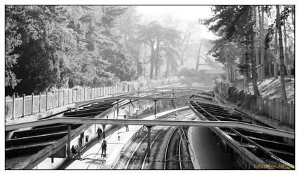 A Railroad Runs Through It by Encephalartos