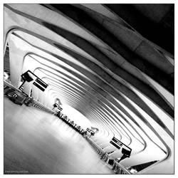 Lyon Saint Exupery TGV by Encephalartos