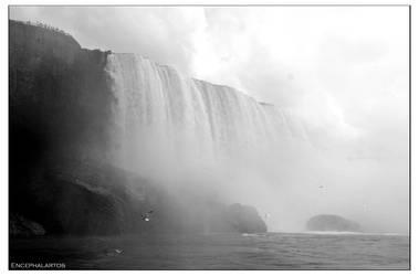 Niagara by Encephalartos