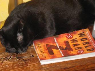 Bedtime Reading by SpellsNSpooks