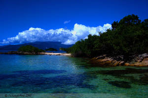 Ilha Grande I by lauchapos