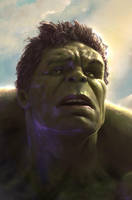 The Hulk by WeaponMassCreation